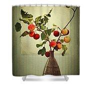 Autumn Stillife Shower Curtain