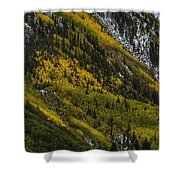Autumn Streaks Shower Curtain
