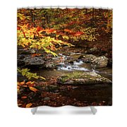 Autumn Stream Square Shower Curtain