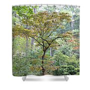 Autumn Surrounds Me Shower Curtain