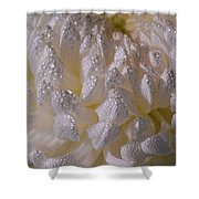 Autumn Tears Shower Curtain