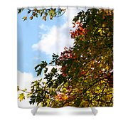 Autumn To Perfection Shower Curtain