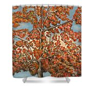 Autumn Tree Shower Curtain by Michael Anthony Edwards