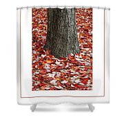 Autumn Tree Poster Shower Curtain