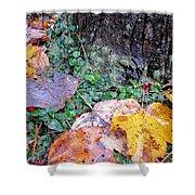 Autumn Tree Trunk  Shower Curtain