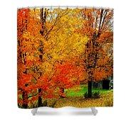 Autumn Trees By Barn Shower Curtain