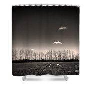 Autumn Trees Shower Curtain by Stelios Kleanthous