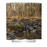 Autumn Tributary Path Shower Curtain