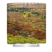 Autumn Tundra With Boreal Forest Shower Curtain
