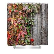 Autumn Vine Shower Curtain