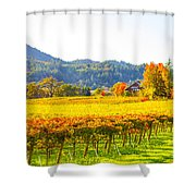Dry Creek Valley Vineyards, California Shower Curtain