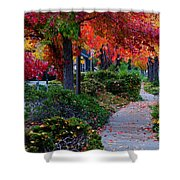 Autumn Walk In Grants Pass Shower Curtain