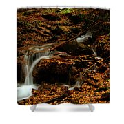 Autumn Washed Away Shower Curtain