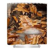 Autumn Water Eddy Shower Curtain