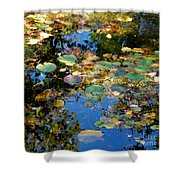 Autumn Water Lily Reflections  Shower Curtain
