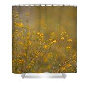 Autumn Wildflowers  Shower Curtain