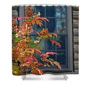 Autumn Window Shower Curtain