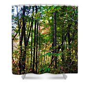 Autumn Wood Shower Curtain