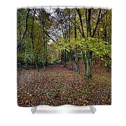 Autumn Woodland Shower Curtain