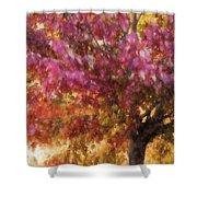 Autumn Xvii Shower Curtain