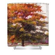 Autumn Xviii Shower Curtain