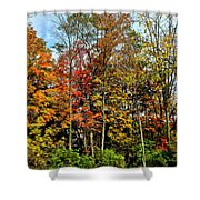 Autumnal Foliage Shower Curtain