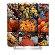 Autumn's Bounty Shower Curtain
