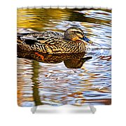 Autumns Brilliance Shower Curtain