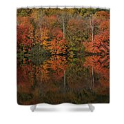 Autumns Design Shower Curtain by Karol Livote