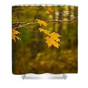 Autumns Fast Approach Shower Curtain