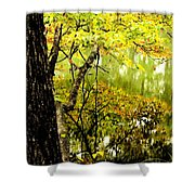 Autumn's First Reflections II Shower Curtain
