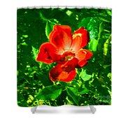 Autumn's  Flower Shower Curtain
