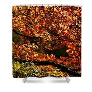 Autumn's Glory Shower Curtain