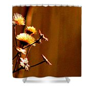 Autumn's Moment Shower Curtain