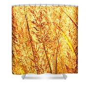 Autumns Passion Shower Curtain