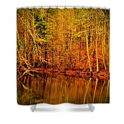 Autumn's Past Shower Curtain