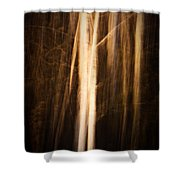 Autumn's Promise 11 Shower Curtain