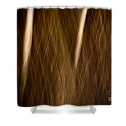 Autumn's Promise 14 Shower Curtain