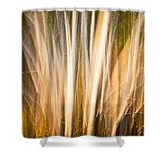 Autumn's Promise 15 Shower Curtain