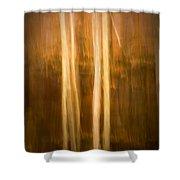 Autumn's Promise 16 Shower Curtain