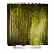 Autumns' Promise 8 Shower Curtain