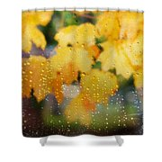 Autumns Tears Shower Curtain