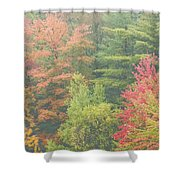 Autumntrees And Fog Shower Curtain