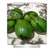 Avacados Shower Curtain