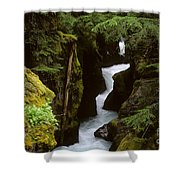 Avalanche Creek Glacier National Park Shower Curtain