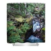 Avalanche Creek In Cedar Forest Shower Curtain