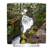 Avalanche Creek In Glacier Np-mt Shower Curtain