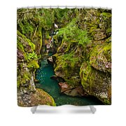 Avalanche Gorge In September Shower Curtain