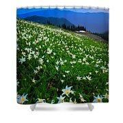 Avalanche Lily Field Shower Curtain