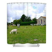 Avebury Stones And Sheep Shower Curtain